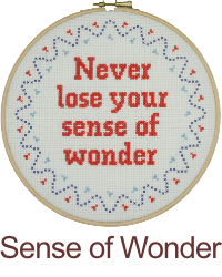 Never loose your sense of wonder.